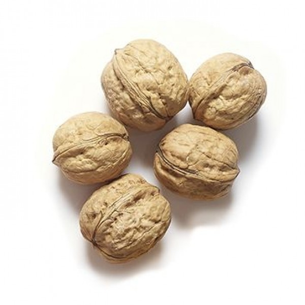 Walnuts in Shell (Aus)